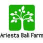 UD Ariesta Bali logo
